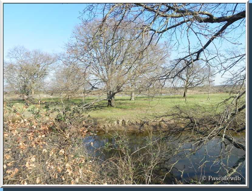 Les plaines du Teich et le domaine de Fleury - 6/8