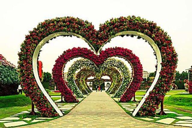 Le jardin du miracle.....