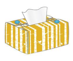 un étui de boite à mouchoirs