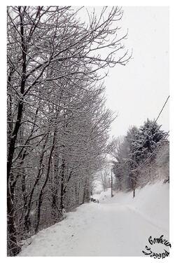 Une grosse chute de neige  ...