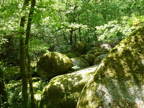 Les rochers de Boussinioux....