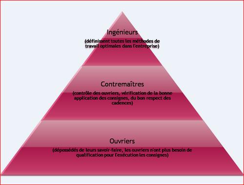 Organisation verticale - pyramide