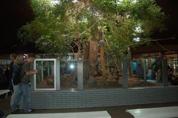 Zoo Duisburg 2012 771