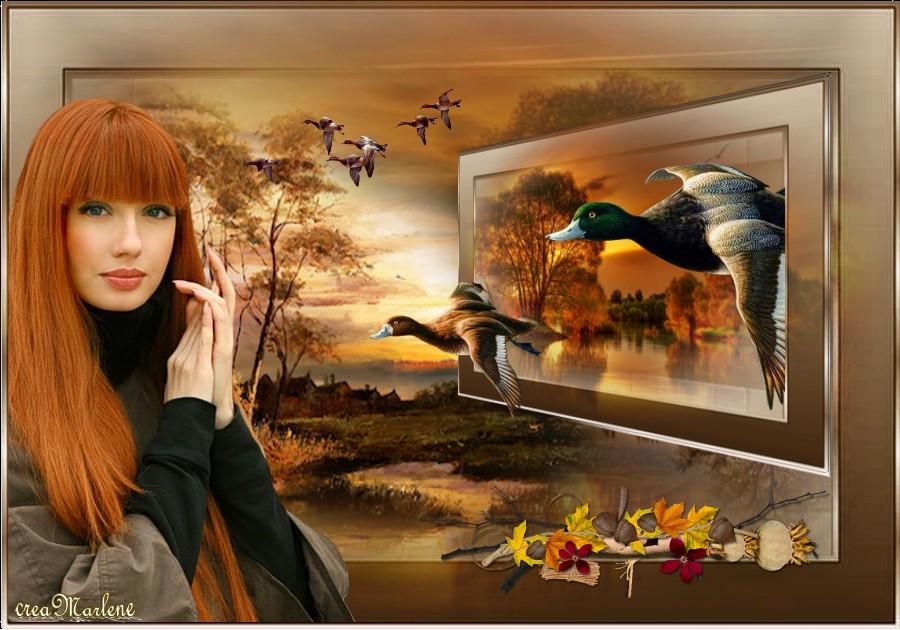 ♥ Les couleurs de l'automne ♥
