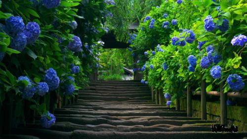 Landscapes pg 2