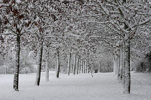 neige-en-delires 2676
