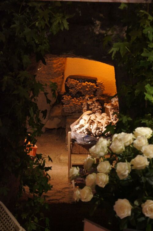 54 ème Journées de la Rose