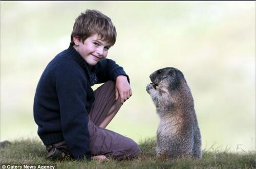 L'Enfant et les Marmotes