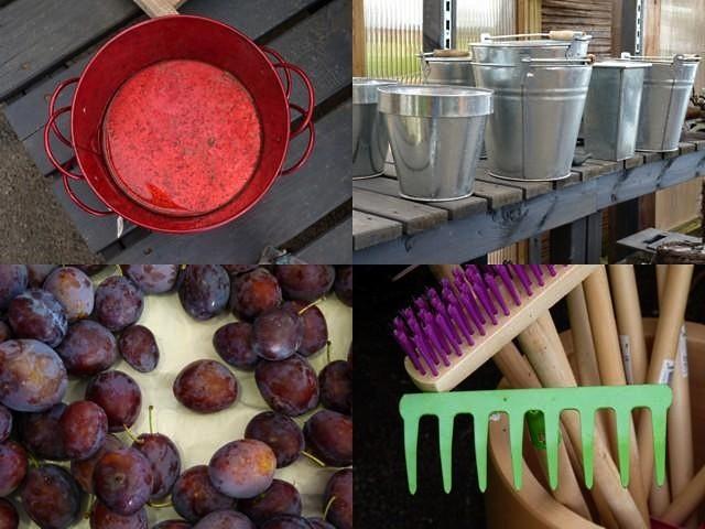 Jardins fruitiers de Laquenxy 22 mp1357 1 2010