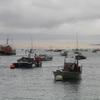 Le port du Cap Ferret avec la Dune du Pyla