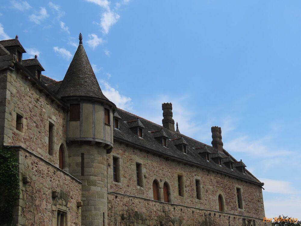 le Chateau de la Roche Jagu