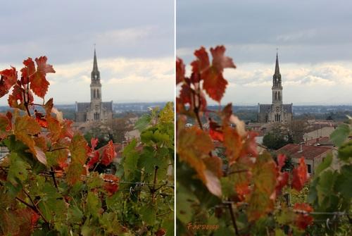 Dans les vignes de Cornas, suite... de l'église