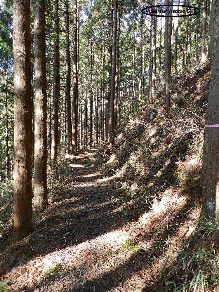 Myo-o du Mont Akagi