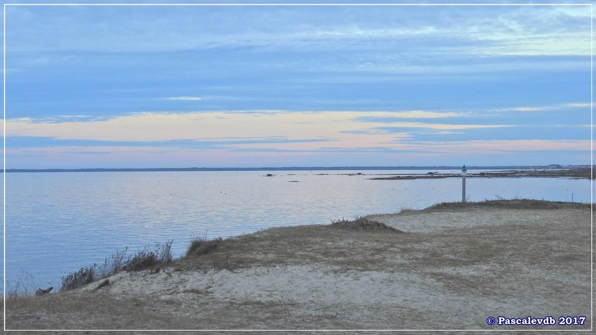 Entre le Port du Rocher et le Port de La Hume - Fin Janvier 2017 5/7