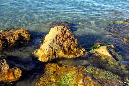 Les rochers du bord de mer