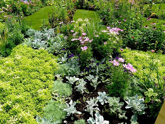 Metz un jardin en chantier 32 Marc de Metz 31 07 2012