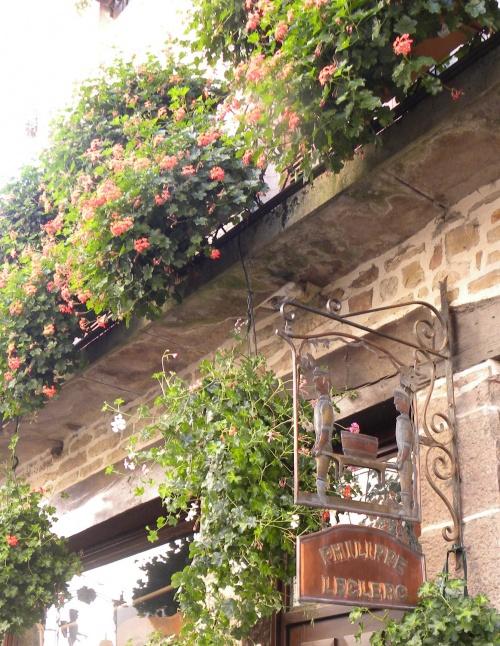 photos de notre visite en bourgogne