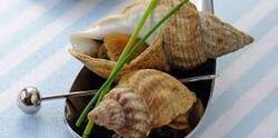Les plaisirs gourmands de la Normandie (6)