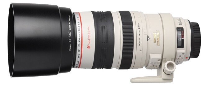 CANON EF 100-400 F/4,5-5,6 L IS USM (Equi. 24x36 : 160-640mm)