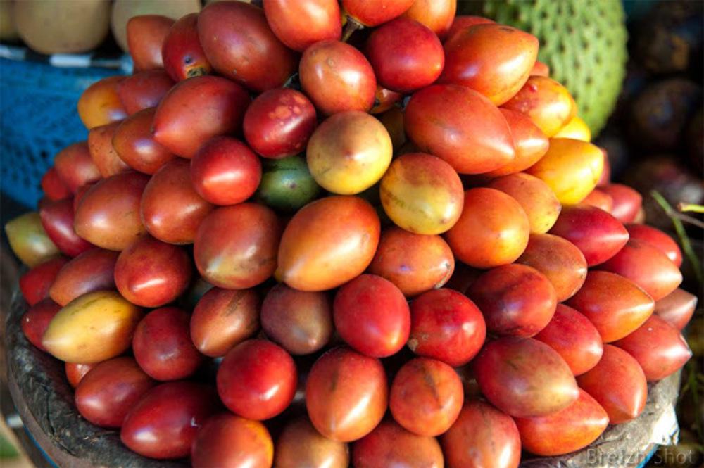Tamarillo,arbre tomate