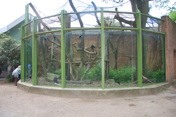Zoo Duisburg 2012 765