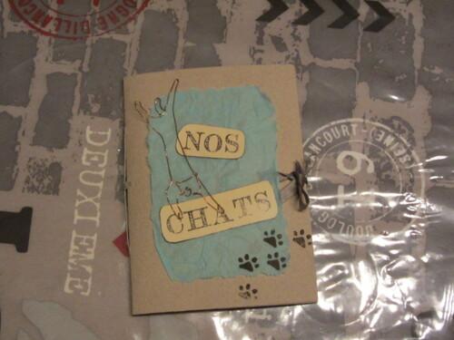 """Mini """"Nos chats"""""""