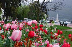Annecy au printemps
