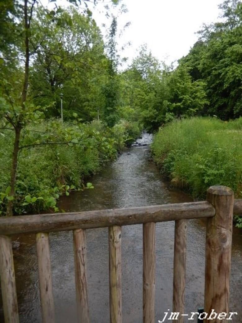 Limoges: Zen au bruit de l'eau.....