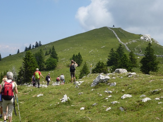 (CH)(VD) Balade au Mont Tendre (1679 m) par le sentier des crêtes, du Col du Marchairuz au Col du Mollendruz.