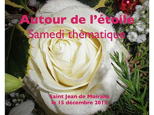 2012 12 15 autour de l'etoile (1)