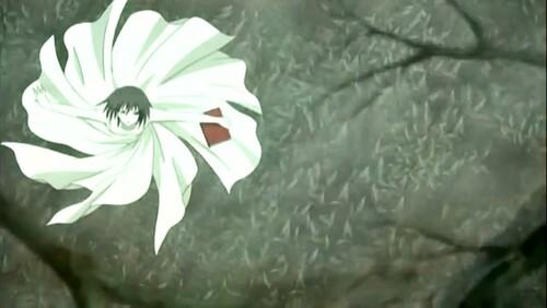 Yuuki série 5