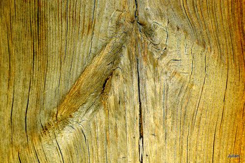 La planche de bois