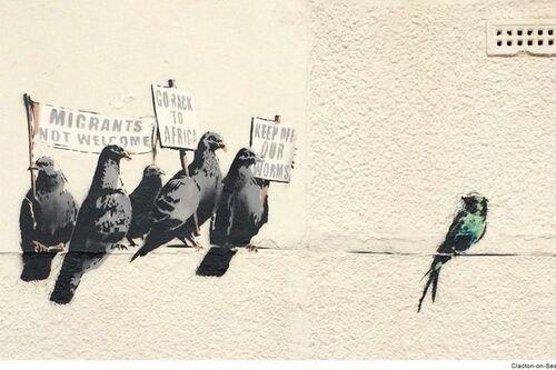 Bansky, les pigeons, par Frido Duchemann