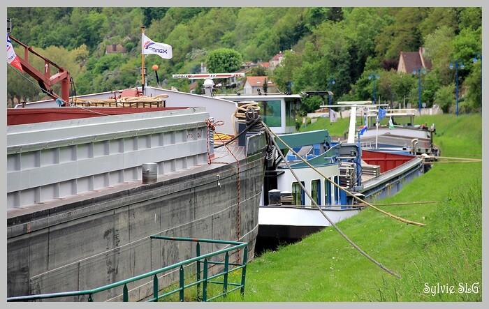 Bateaux ... sur la Seine