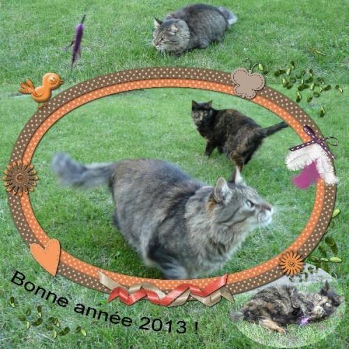 Bonne-annee-2013_02.jpg
