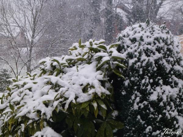 2 décembre 2012 (1)