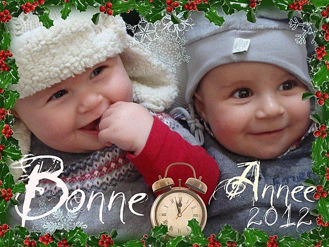 bonne-annee-2012-1.jpg
