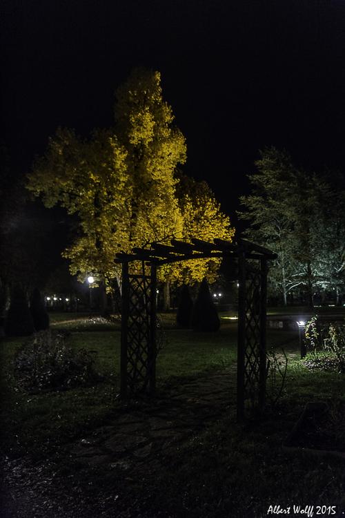 Virée nocturne - Rebelote suite et fin