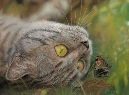 Tableau du samedi : Un papillon dans l'herbe