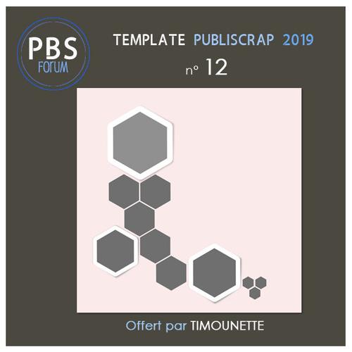 PBS-Template 12