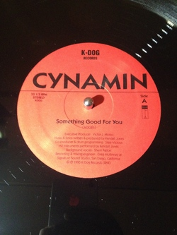 Cynamin - Something Good For You - 1995