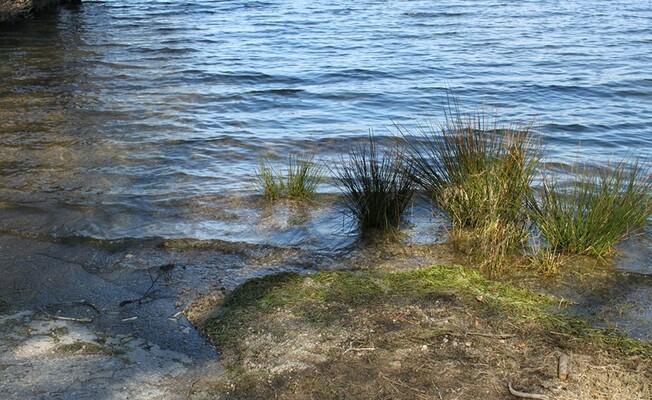Lac du Drennec 016