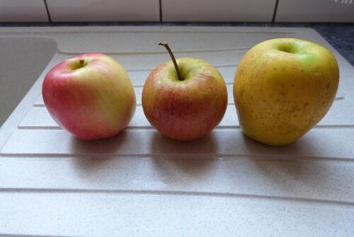 Mes pommes ...