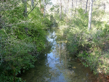 Le ruisseau depuis la passerelle