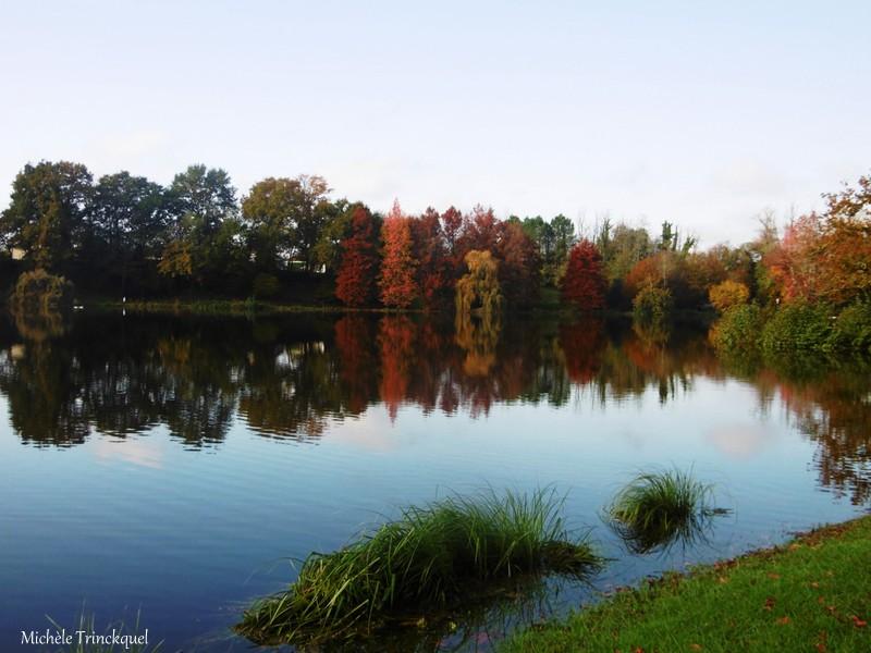 Une balade autour du Lac de Christus à SAINT PAUL LES DAX (40), le 18 novembre (suite)...