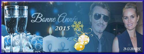 Johnny décembre 2014