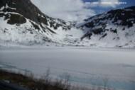 Senja-lac gelé