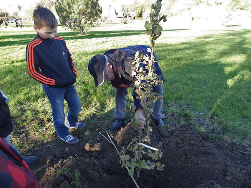 Plantation d'un arboretum à la Maison de la Forêt