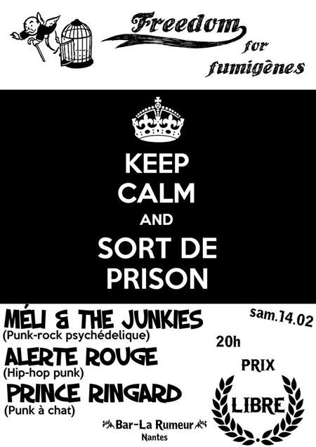 Freedom for fumigènes au bar La Rumeur le 14 février 2015 à Nantes (44)