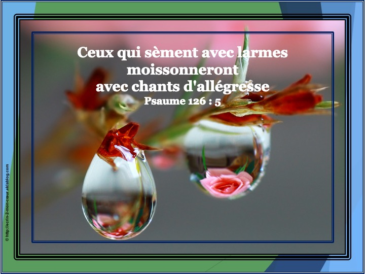 Ceux qui sèment avec larmes - Psaumes 126 : 5